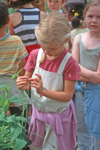 girl w sweet pea[small]